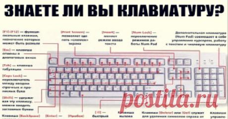 Знаете ли вы клавиатуру на своём компьютере? - Золотые Советы