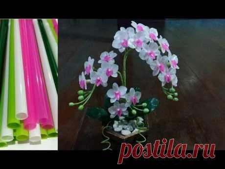 ดอกไม้จากหลอด ดอกกล้วยไม้จากหลอด by มายมิ้นท์ Orchid flower from Straws.