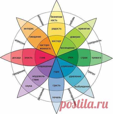 Влияют ли цвета на здоровье?