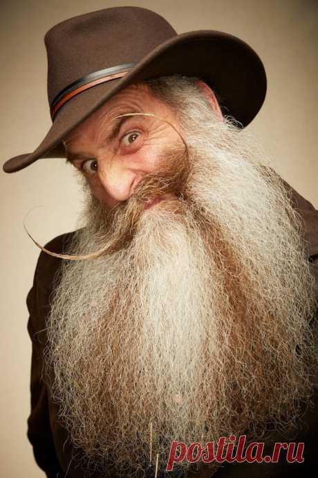 Конкурс бородачей 2019: новые креативные укладки / Фотоподборки / Funtema — развлекательная сеть