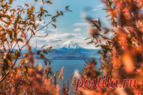 Камчатская осень. Автор фото – Юницын Алексей: nat-geo.ru/community/user/192703/