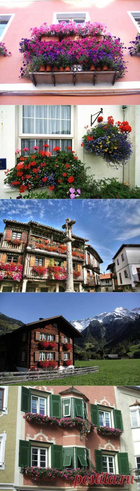Цветочные балконы и окна   Наш уютный дом