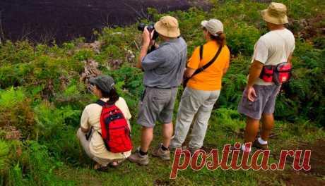 Что такое экотуризм. Новое модное направление в туризме   Папа на отдыхе   Яндекс Дзен