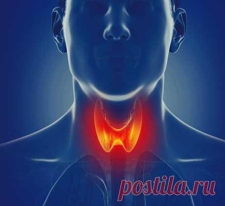 Точки для оздоровления щитовидной железы ЩИТОВИДНАЯ ЖЕЛЕЗА является важной частью эндокринной системы. Она отвечает за выработку йодосодержащих гормонов, которые контролируют метаболические процессы, регулируют энергетический обмен, нормализуют созревание и рост клеток тканей.
