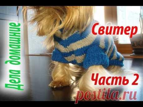 Свитер для собаки.Часть2. Одежда для собак своими руками на канале''Дела домашние''.