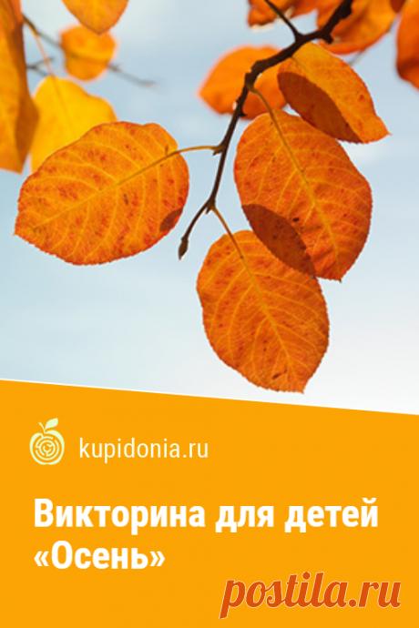 Викторина для детей «Осень». Интересный тест для детей об осени из серии «Времена года». Проверь свои знания!