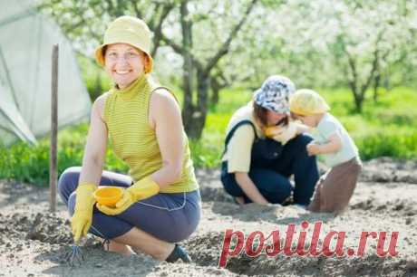 Третья неделя мая. Сезонные работы в саду и огороде.  8 секретов хорошего урожая картофеля, 9 способов борьбы с сорняками, 10 рецептов весеннего варенья -