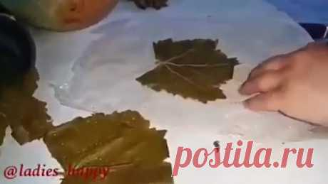 Как завернуть долму (голубцы в виноградных листьях)