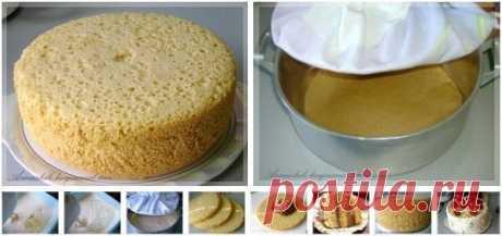 Un alto bizcocho, tierno para la torta (¡Sin horno) | Sobre retseptiki - las mejores recetas de cocina para Ud!