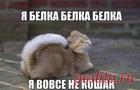 ггыы!!!