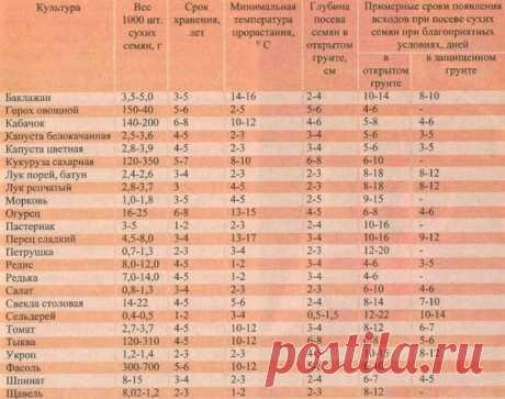 Это вам не таблицу умножения запомнить...Новая маркировка пакетов с семенами | ТАЁЖКА №8 | Яндекс Дзен