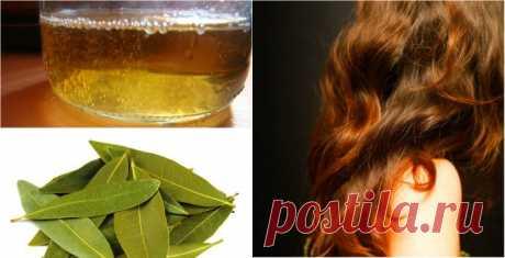 Остановить выпадение волос помогут эти 2 ингредиента! Густые, красивые и здоровые волосы за копейки!