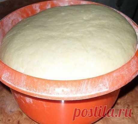 Универсальное тесто на майонезе. Подходит для любой выпечки! Выпечка из майонезного теста долго не черствеет. Годится для любой начинки. Ингредиенты: - 150 гр майонеза - 0,5 чайной ложки соли - 3 чайных ложки сахара - 25 гр дрожжей - около 4 стаканов муки - 1 стакан воды Дрожжи развести в воде, добавить майонез, соль, сахар Всыпать муку постепенно, чтобы получилось мягкое, элластичное тесто. Яйца и масло в этом тесте не нужны, в майонезе это итак есть. Накрыть тесто салфет...