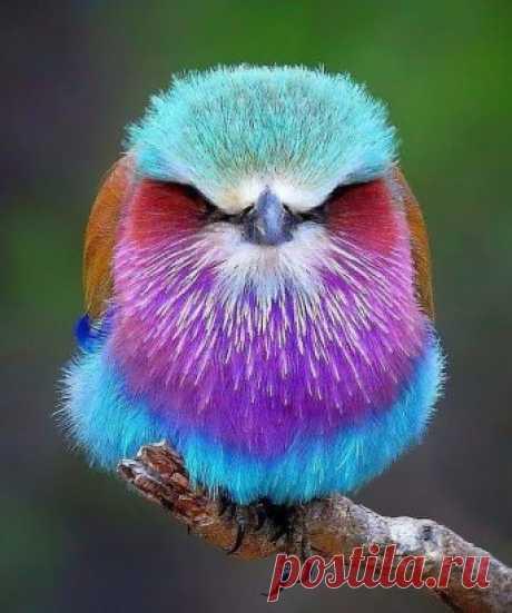 Когда природа не жалеет красок! ... :)))
