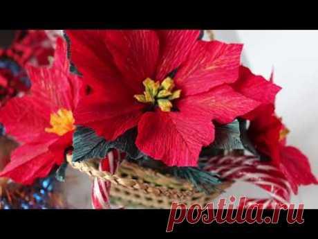 Paper Poinsettia Flower DIY / Tutorial / Пуансеттия из бумаги / Цветок Рождественская звезда - YouTube