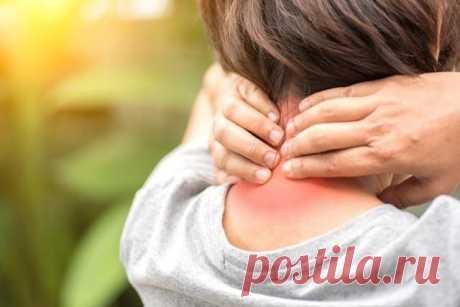 Как с помощью упражнений предотвратить боли в области шеи