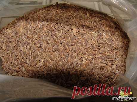 Чтобы забыть о давлении нужно Чтобы забыть о давлении нужно взять горсть семян укропа. Через неделю будете здоровы! Высокое давление придет в норму, исчезнут запоры, боли в желудке и