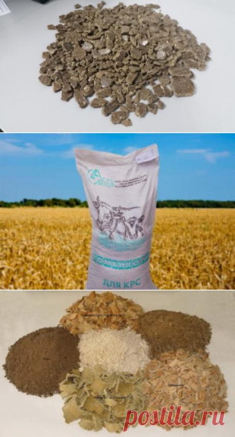 Использование рыжикового жмыха и бишофита в рационах лактирующих коров - БиоКорова