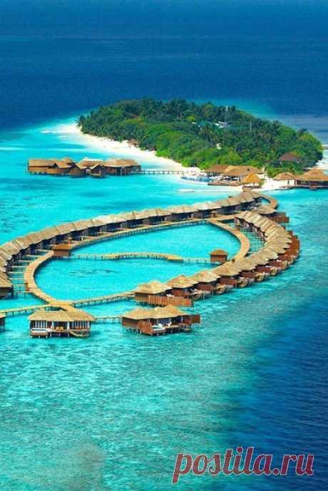 Лили Бич, Мальдивы