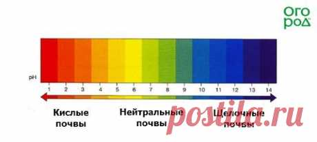 Кислотность почвы: определяем и регулируем   Почва и плодородие (Огород.ru)