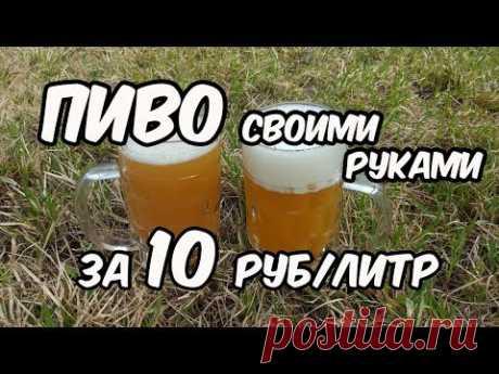 Пиво своими руками за 10 рублей - 1 литр. Как сварить пиво в домашних условиях