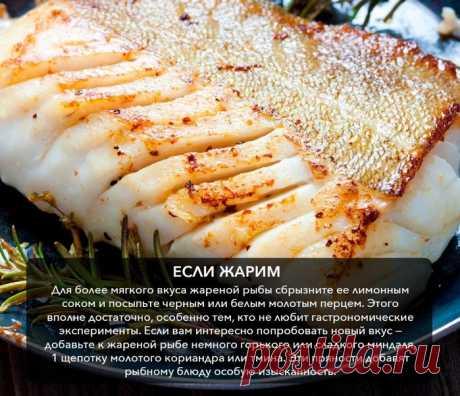 Кулинария>Какую приправу лучше выбрать для рыбы