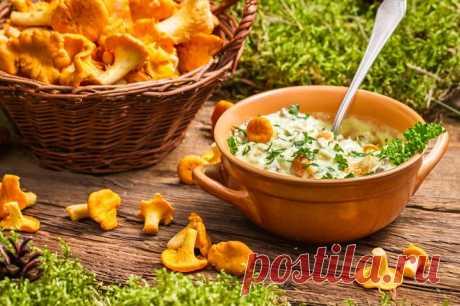 Соусы из грибов: 3 простых рецепта | Смачно Как приготовить соус из грибов. Рецепт грибных соусов