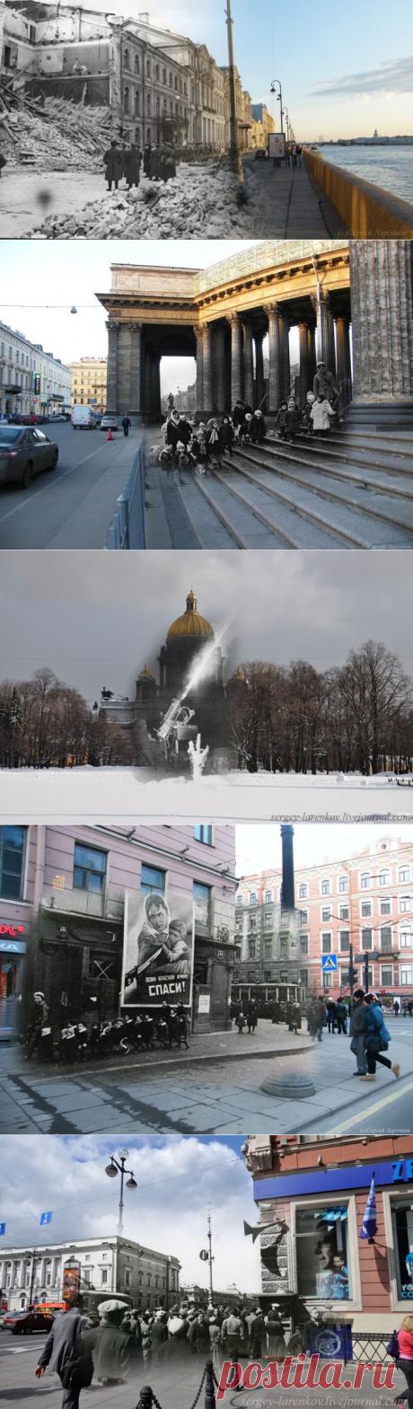 Echo of the Siege of Leningrad