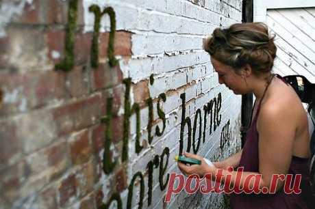 Надписи мхом / Городская среда (граффити, снеговики, ets) / Модный сайт о стильной переделке одежды и интерьера