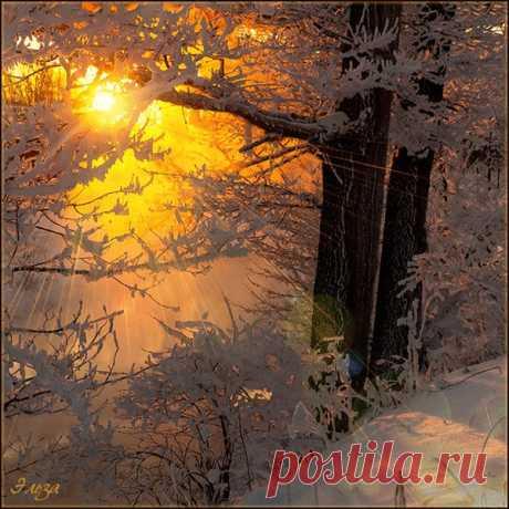 Доброго зимнего утра, дорогие!😊