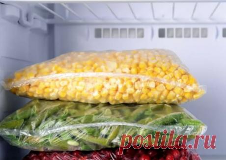 Полезные правила заморозки: какие продукты можно, а какие нельзя замораживать!