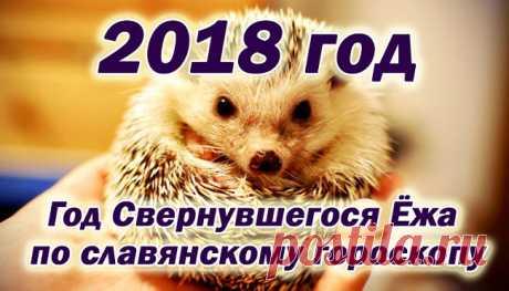 По славянскому календарю 2018 - год свернувшегося ежа.