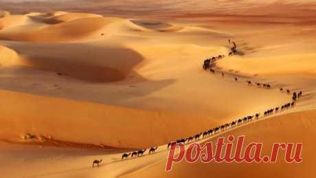 Молчаливая красота пустыни...