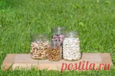 Секреты выращивания вкусной и урожайной фасоли Фасоль можно выращивать на отдельном участке, но хорошо она растёт и как уплотняющая культура, особенно если это сорта кустовой стручковой фасоли.Выбираем сорта фасоли и выращиваем богатый урожайСорта фасоли бывают сахарные – без пергаментного слоя, который можно употреблять в пищу целиком, а так же лущильные сорта или как из ещё называют- зерновые...