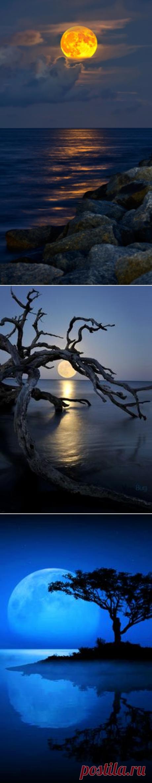 ✯ Full-Moon rising over Jupiter Inlet Beach | Lunas | Пляжи, Флорида и Луна