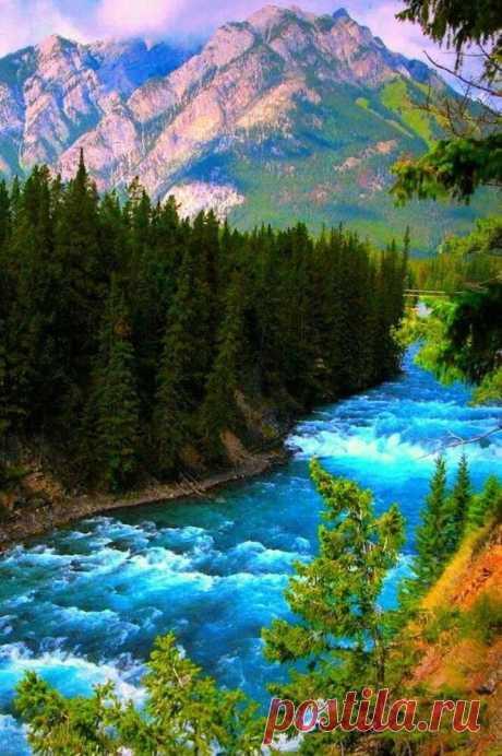 Верю я, что кроме суеты... На земле есть мир очарованья...
