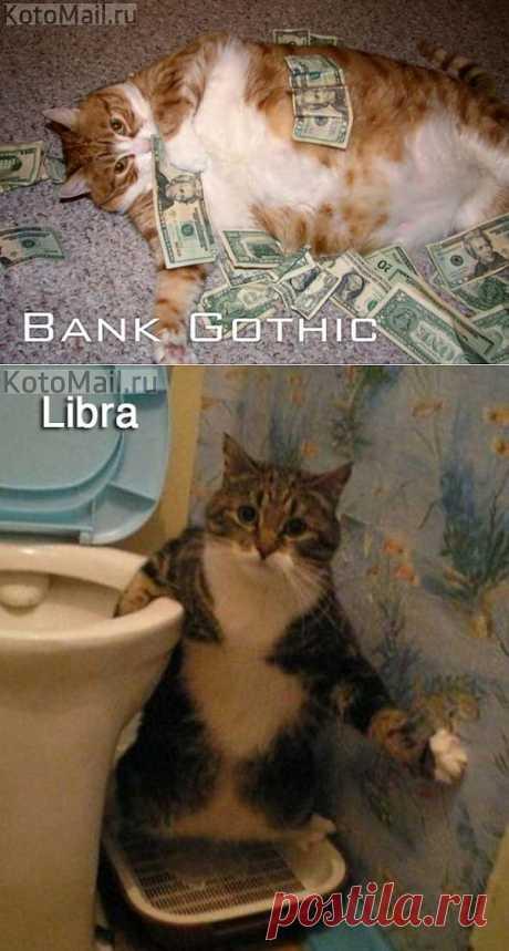 Кошки - шрифты и кошки - Знаки Зодиака | KotoMail.ru