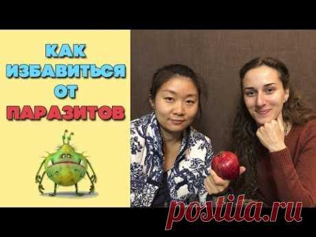 Как избавиться от паразитов   Народные средства от паразитов
