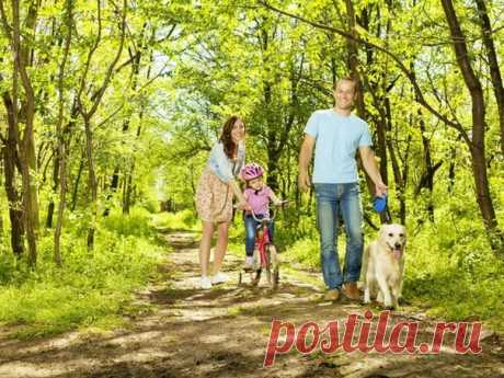 Пошли гулять! Хозяин собаки получает больше физических нагрузок, чем обладатель абонемента в тренажерный зал. Опрос 5 тысяч человек, проведенный британскими производителями товаров для животных, показал: с питомцем гуляют в среднем дважды в день по 24 минуты — а это 5 часов 38 минут активных прогулок на свежем воздухе в неделю! Занятия в зале доставляют удовольствие только 16% опрошенных, для 70% это утомительная необходимость, а 46% частенько находят предлог для отказа от занятий спортом.…