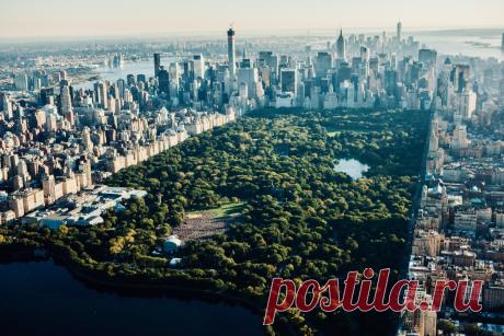 Любопытные факты о Центральном парке в Нью-Йорке