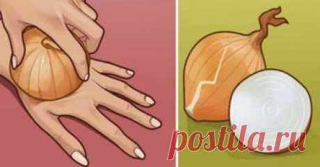 Сырой лук — источник молодости и сильнейший регенератор клеток. Берем самую обычную луковицу… - Ok'ейно Полезные свойства лука + рецепты