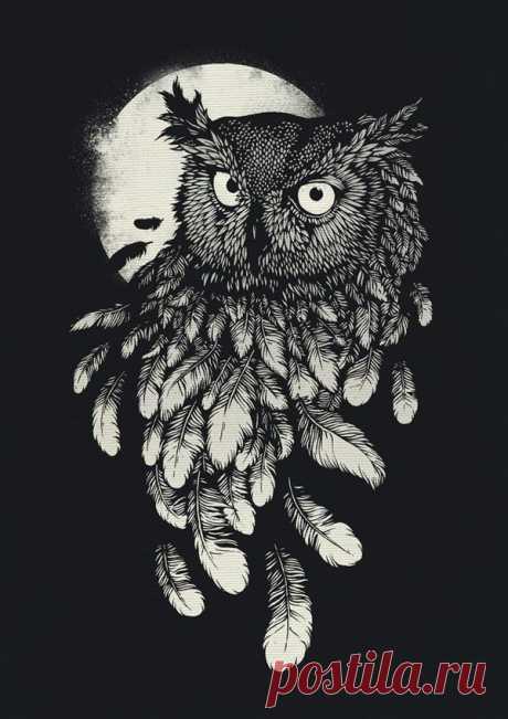 Графика. Цвет. Совушка-сова.