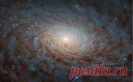 NASA нашло в космосе «портал в другое измерение» :: Технологии и медиа :: РБК