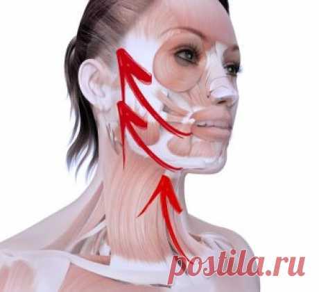 КРУГОВАЯ ПОДТЯЖКА ЛИЦА:  ВСЕГО ОДНО ОМОЛАЖИВАЮЩЕЕ УПРАЖНЕНИЕ Это упражнениебез хирургического вмешательства позволяет вернуть естественную красоту, уменьшить проявления старения, минимизировать морщины, подтянуть ослабевающие, утончающиеся с возрастом мышцы лица