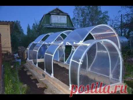What GREENHOUSES are built by the Chinese summer residents
