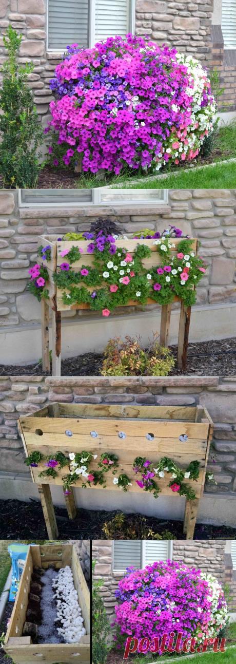 Ещё одна замечательная идея для дачи, которая порадует цветоводов