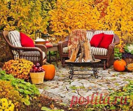 осень, сад