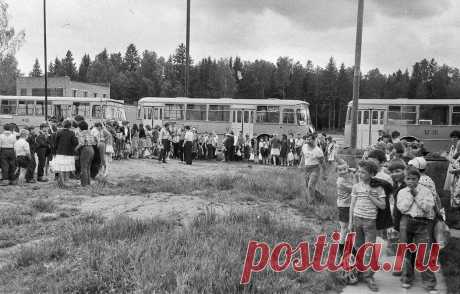 Вы помните чем кормили в пионерлагере СССР? | Ярмарки монет и антиквариата | Яндекс Дзен