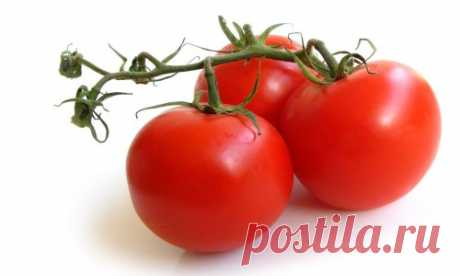 Подкормка рассады помидоров: чтобы были толстенькие, алгоритм, технология, препараты и средства, народные, натуральные