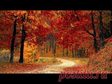 Прекрасная осень - расслабляющая музыка со звуками природы